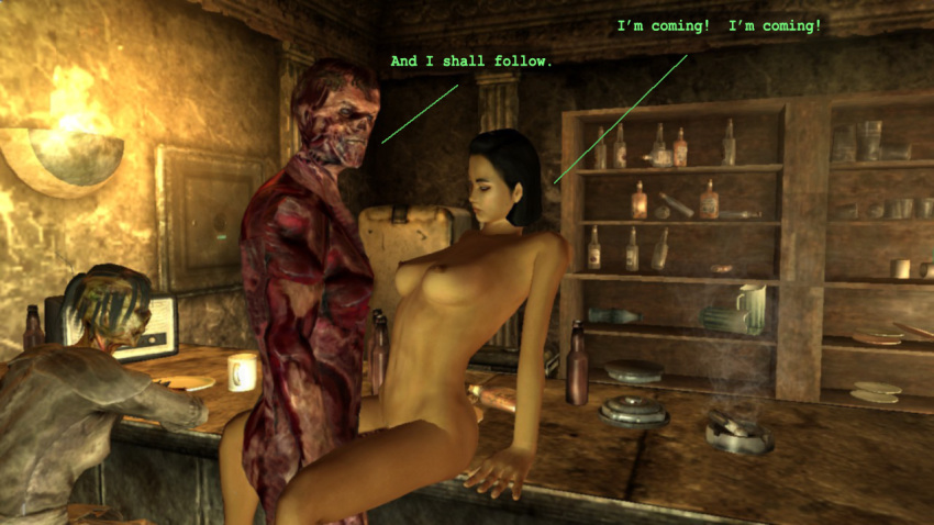 fallout or 3 seagrave bannon Skyrim where is mjoll the lioness